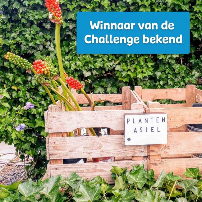 Plantenasiel wint Slimme Thermostaat